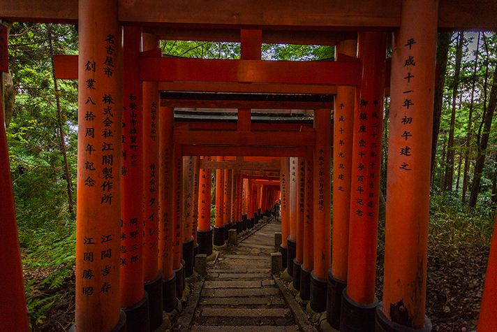 Kyoto2_15_article