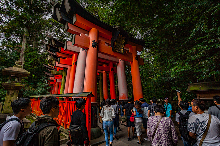 Kyoto2_3_article